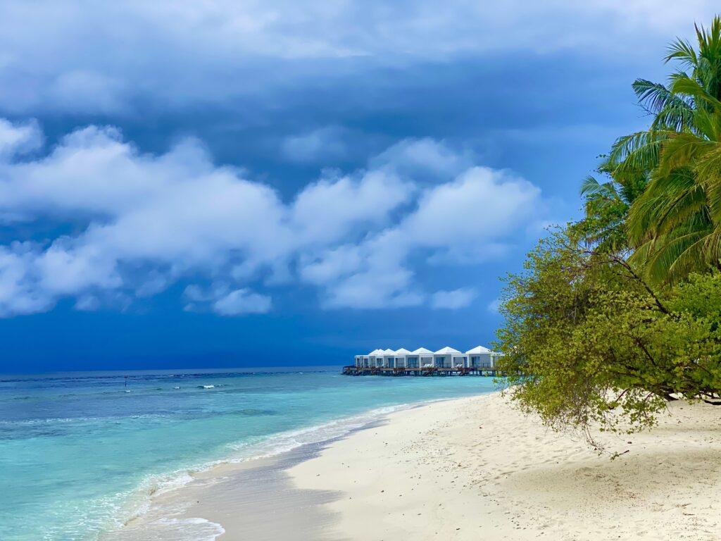 alt Maldives